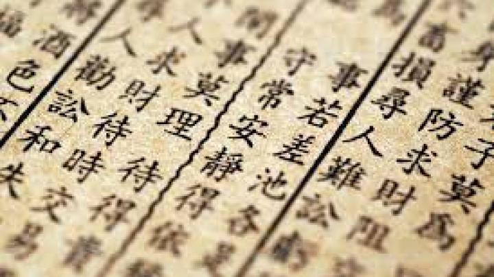 Un muzeu din China oferă recompense pentru descifrarea caracterelor înscrise pe oasele-oracol