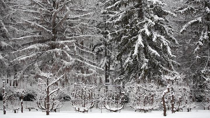 Toamnă în calendar, iarnă afară. A NINS CA-N POVESTE în nordul ţării (VIDEO/FOTO)