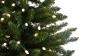 SUMĂ EXORBITANTĂ! Oraşul din România în care bradul de Crăciun costă 90.000 de euro