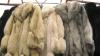 Moldovenii, tot mai atraşi de lux: Au cumpărat mii de haine de blană şi tone de bijuterii