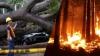 Natura îşi face de cap în mai multe regiuni din America Latină: Panama afectată de urgan, iar Peru de incendii