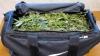 O geantă plină cu...MARIJUANA! Descoperirea de proporţii de la Tiraspol