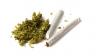 Marijuana ar putea deveni legală pentru un sfert din populația Americii