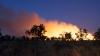 Australia, PÂRJOLITĂ zeci de incendii de vegetație, care au scăpat de sub control