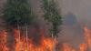 Cel puțin 14.000 de persoane, EVACUATE din cauza incendiilor de pădure, în statul american Tennessee