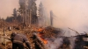 Pârjolul din Israel a fost stins. Zeci de oameni acuzați că ar fi provocat incendiile, reținuți