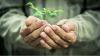 INGENIOS: Ideea genială ce-i permite unui fermier să cultive legume chiar şi în perioada rece a anului