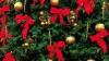 Atmosferă de sărbătoare la Casa Albă. La reședința președintelui SUA a ajuns pomul de Crăciun