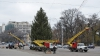 START sărbătorilor de iarnă! Principalul Pom de Crăciun al țării va fi inaugurat în această seară