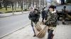 """Forfotă mare pe strada Bănulescu-Bodoni. Înarmaţi cu hârleţe, angajaţii de la """"Spaţii Verzi"""" au plantat copaci (FOTO)"""