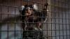 Animalele de la Grădina Zoologică din Capitală, GATA DE IARNĂ. Ce provizii au fost pregătite (FOTOREPORT)