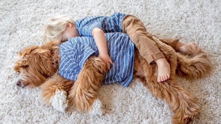 ADORABIL! Prietenia deosebită dintre un băieţel şi căţelul său a surprins tot internetul (FOTO)