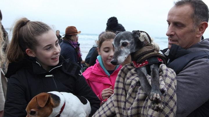 Lecţie de dragoste şi solidaritate. Sute de iubitori de animale s-au adunat în Marea Britanie