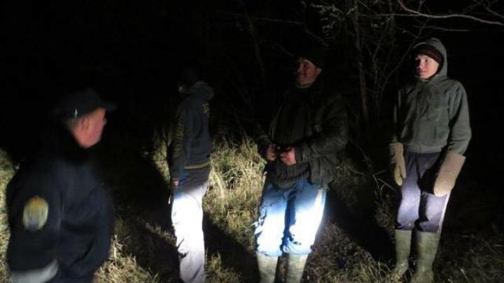 Fâşie forestieră din Sângerei, DEFRIŞATĂ ILEGAL! Inspectorii de mediu au identificat făptaşii (FOTO)