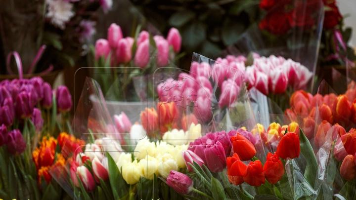 """""""Flori cu Solidaritate"""". O nouă acţiune Edelweiss împotriva violenţei în familie"""