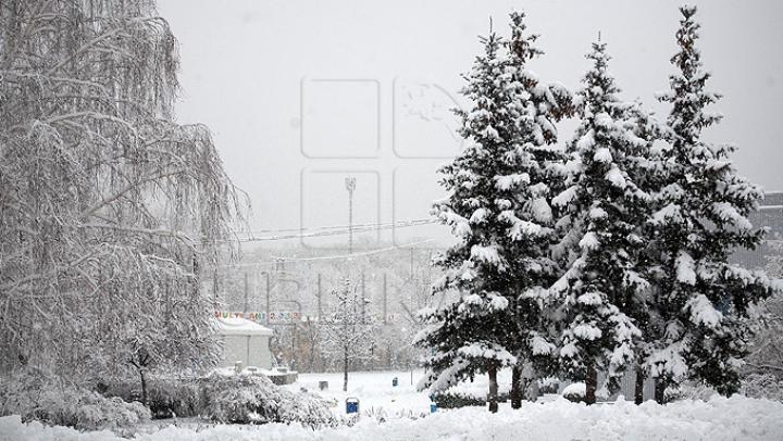 COD GALBEN de ninsori şi vânt puternic în România, inclusiv în sudul şi centrul Moldovei