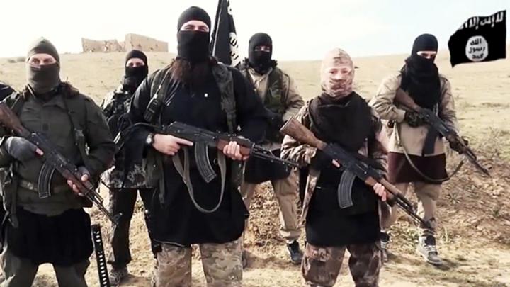 """Statul Islamic celebrează victoria lui Donald Trump: Un """"măgar"""" care va """"va distruge imperiul american"""""""