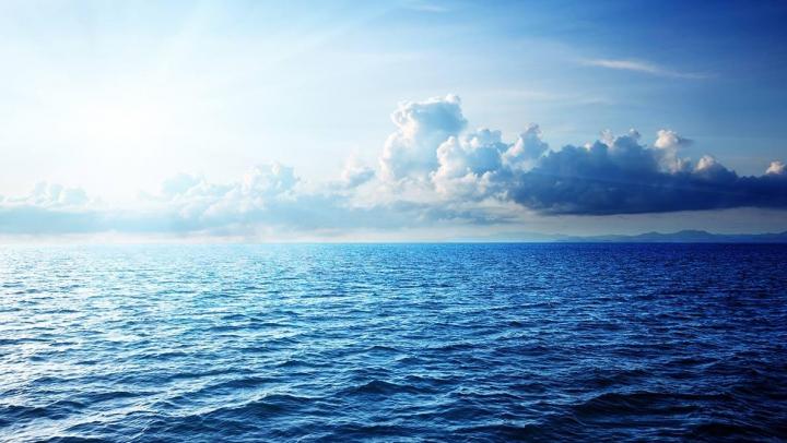 Au început să filmeze în adâncul oceanului. Te trec fiorii când vei vedea ce au descoperit