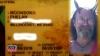 Un american a câștigat în instanță dreptul de a se fotografia pentru permisul de conducere purtând coarne