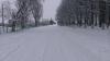 NINGE CA ÎN POVESTE! Iarna a creat UN PEISAJ SPECTACULOS la Briceni (GALERIE FOTO)