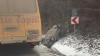ACCIDENT GRAV la Hânceşti. Un automobil S-A RĂSTURNAT într-un şanţ (FOTO)