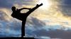 Moldovenii predau arta de a învinge. Zeci de instructori de karate din Polonia, la seminarul organizat de Panasiuc
