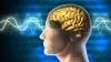 STUDIU: Unele părți ale creierului ''adorm'' chiar și atunci când suntem treji