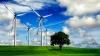 Google anunță că din 2017 centrele sale de date ar urma să fie alimentate doar cu energie regenerabilă