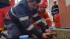 ÎŢI VA TOPI INIMA! Pompierii luptă disperaţi pentru viaţa unui animăluţ (VIDEO)