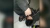 A luat-o la fugă când a zărit poliția! Ce a încercat să ascundă de oamenii legii  un tânăr din Capitală (VIDEO)