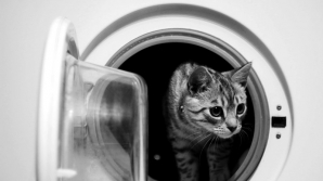BINE DE ŞTIUT! Ce haine nu trebuie să pui în mașina de spălat