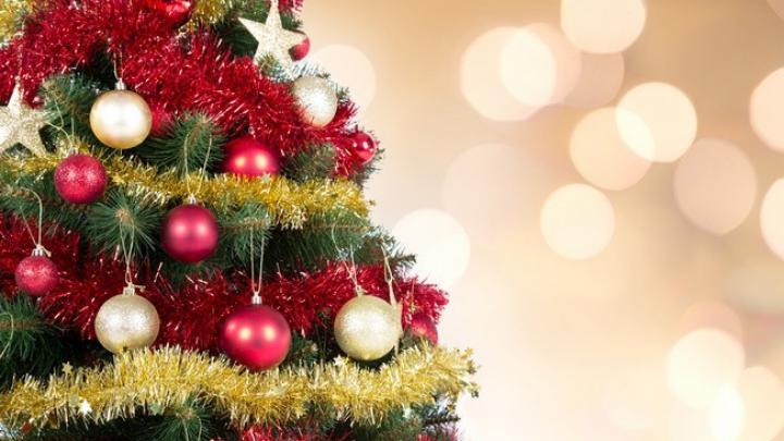 Istoria pomului de Crăciun. Cum am ajuns să decorăm bradul de sărbători