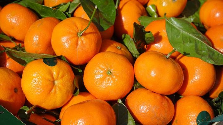 Secretul clementinelor cu frunze din supermarketuri. Ce sunt de fapt