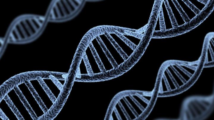 STUDIU: A fost identificată gena ce limitează consumul de alcool
