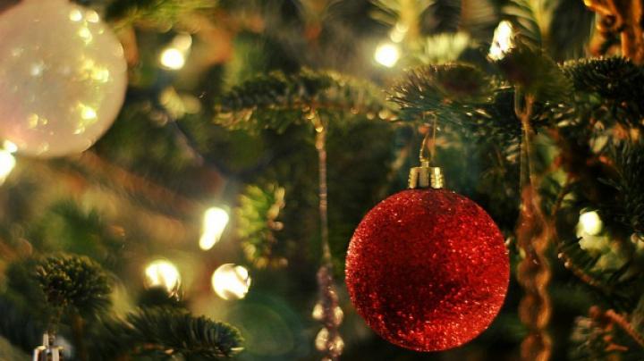 Semnificaţii şi legende. Află detalii INEDITE despre bradul de Crăciun
