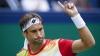 Tenismanul David Ferrer a fost eliminat de la turneul ATP de la Brisbane