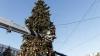 GATA cu sărbătorile! Principalul Pom de Crăciun a fost scos din PMAN. Reacţiile trecătorilor