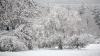 Moldova, acoperită de zăpadă! Raionul în care a nins cel mai mult şi unde este cel mai frig