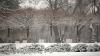 METEO 21 ianuarie: Ceaţă, polei şi ninsori slabe. Câte grade vor indica termometrele
