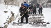 Exemplu demn de urmat. Mai mulţi locuitori din sectorul Buiucani au curăţat zăpada din curtea blocului