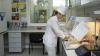 Autoritățile din Moldova, mai bine pregătite pentru a preveni pesta porcină şi alte boli transfrontaliere