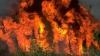 PUBLIKA WORLD: Incendiile fac prăpăd în Chile. Autorităţile cer ajutorul ţărilor vecine (VIDEO)