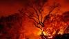 Incendiile de pădure continuă să facă PRĂPĂD în Chile: Șase oameni au murit