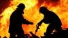 Mii de viori transformate în scrum în urma unui INCENDIU DEVASTATOR