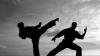 O viaţă dedicată artelor marţiale. Victor Panasiuc, primul moldovean deţinător al celui de-al 7 dan în karate-do