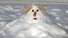Cei mai haioşi oameni de zăpadă (GALERIE FOTO)