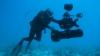 IMPRESIONANT! Un peşte rar descoperit cu doar doi ani în urmă, filmat pentru prima dată (VIDEO)