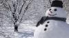 Când a fost făcut primul om de zăpadă. În acea perioadă, artiştii erau plătiţi să sculpteze în omăt