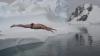 ADRENALINĂ! Concurs de înot într-un lac cu apă rece (VIDEO)