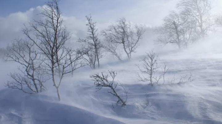 """România: Comandament de iarnă la Ministerul Transporturilor: """"E cea mai grea iarnă din 1990 încoace"""""""
